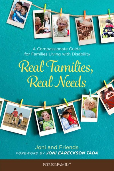 Book cover for Real Families, Real Needs