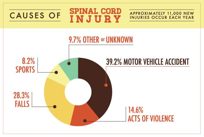 Causes of Spinal Cord Injury Infograph